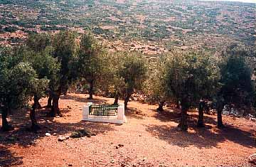 Photo of Rupert Brooke's grave in the Olive Grove in southern Skyros